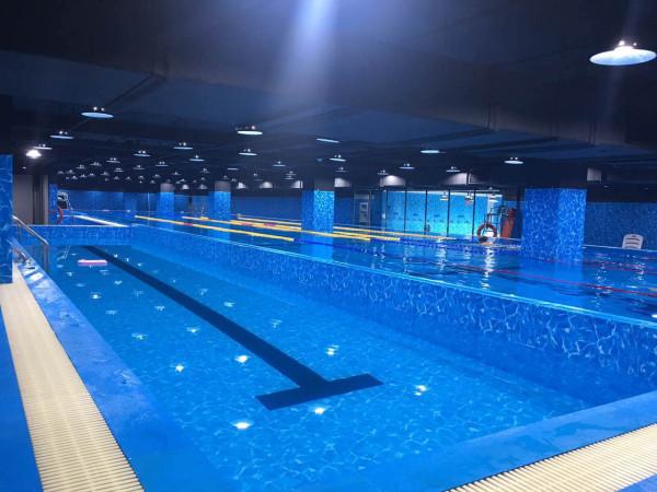 大型游泳池工程造价预算