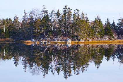 园林景观假山工程造价预算